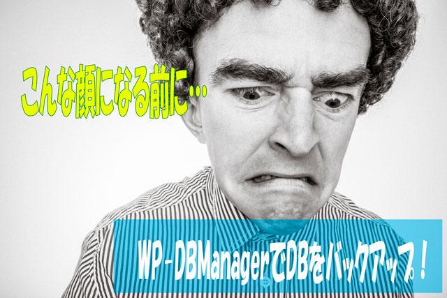 データベースを自動でバックアップするWP-DBManagerの設定と日本語化